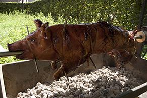 varken-aan-het-spit