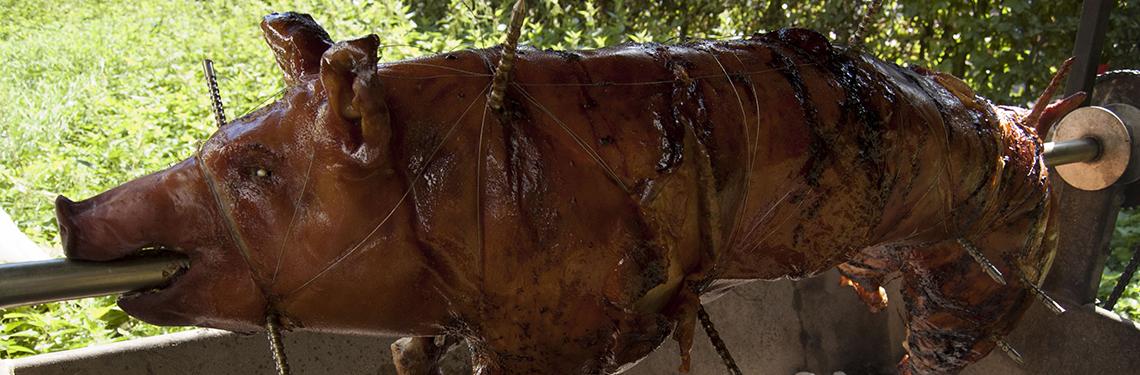varken-aan-het spit